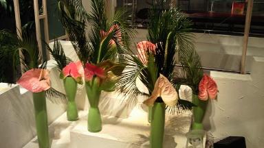 2012.04.26週の花.jpg