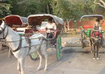 インド馬車.JPG