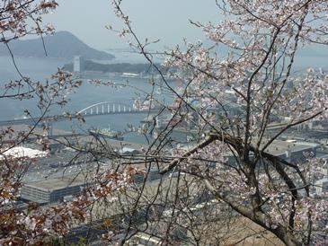 桜の黄金山から見た広島湾.jpg