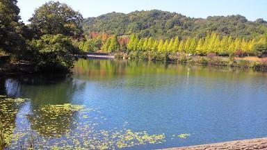 鏡山公園1.jpg