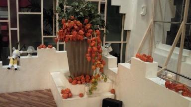 2011.08.04の花.jpg