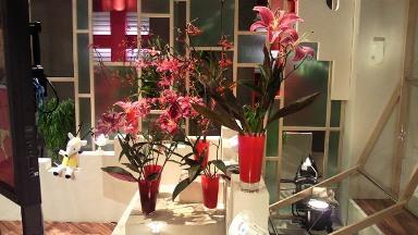 2011.08.11の花.jpg