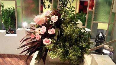 2011.12.1週の花.jpg