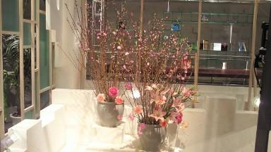 2012.03.01週桃の花.jpg