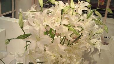 2012.07.26週の花.jpg