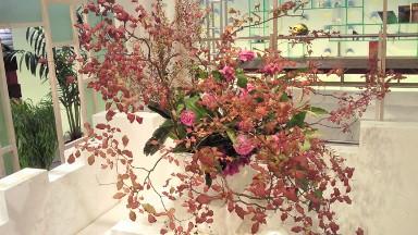 2012.08.30週の花.jpg
