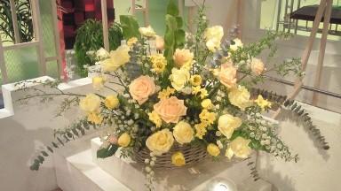 2012.12.16週の花.jpg