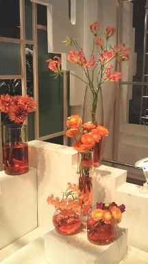 2013.01.18週の花.jpg
