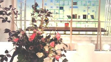 2013.02.07週の花.jpg