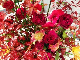 2013.04.18週の花.JPG