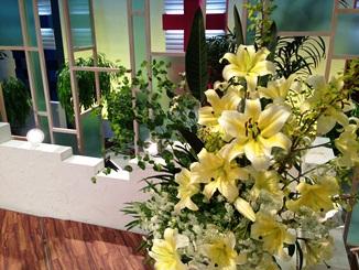 2013.05.02週の花.JPG