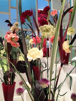 2013.05.09週の花アップ.jpg