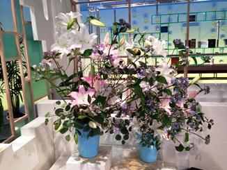 2013.07.11週の花.JPG