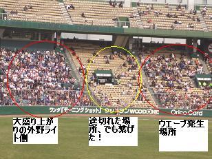 野球観戦ウエーブ.JPG