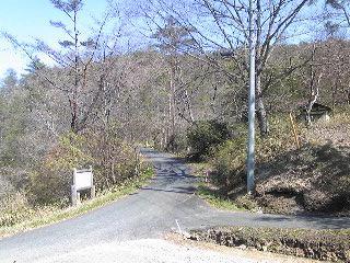この道あの道.JPG