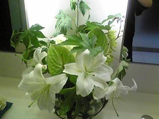 レクサス:トイレの花.jpg