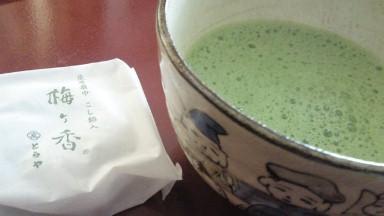 お抹茶と虎屋の最中.jpg