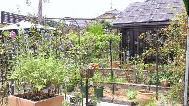 きままなターシャのお庭.jpg