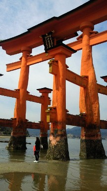 宮島の大鳥居を下から眺める.jpg
