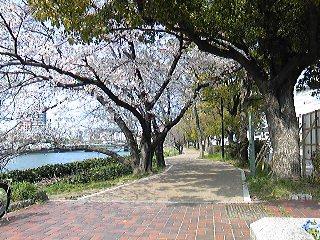 平和の道.jpg