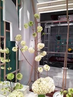 2015.05.16週の花.JPG