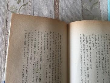 IMG_7951.JPG